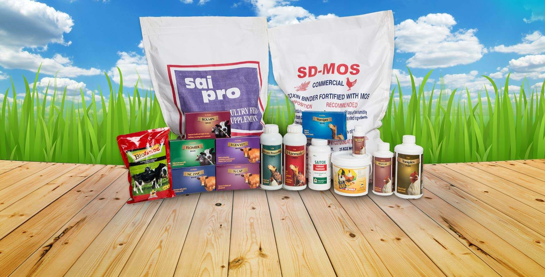 Animal Feed Additives & Premix Manufacturers in India
